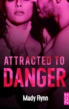 Mady Flynn - Attracted To Danger.