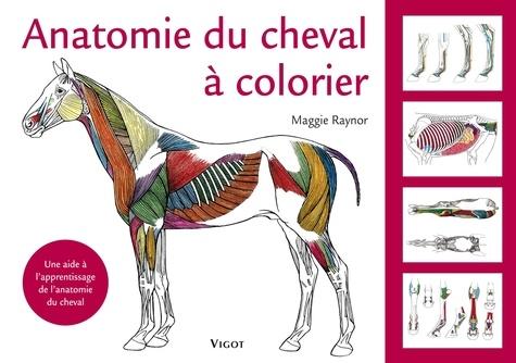 Maggie Raynor - Anatomie du cheval à colorier - Une aide à l'apprentissage de l'anatomie du cheval.