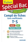Magnard - Compil de fiches gros coefficients Tle S.