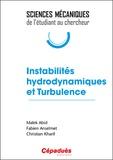 Malek Abid et Fabien Anselmet - Instabilités hydrodynamiques et turbulence.