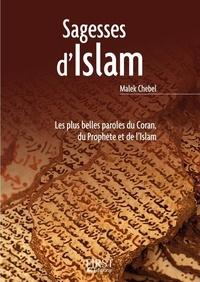 Téléchargez des livres gratuits pour iphone 4 Sagesses d'Islam par Malek Chebel in French