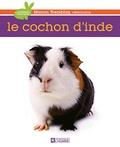 Manon Tremblay - Le cochon d'Inde.