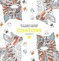 Marabout - Chatons.