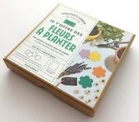 Marabout - Kit Mon petit jardin de poche Je t'offre des fleurs à planter - Des graines cachées dans du papier et prête à germer sitôt enterrées. Le livre mode d'emploi avec 4 fleurs de papier ensemencé.