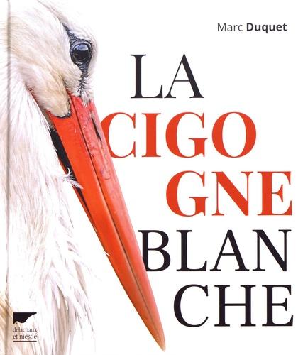 Marc Duquet - La cigogne blanche.