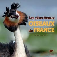 Marc Duquet - Les plus beaux oiseaux de France.