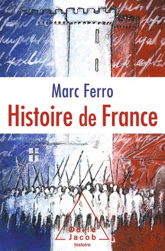 Histoire de France. Le roman de la nation