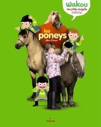 Ucareoutplacement.be Les poneys Image