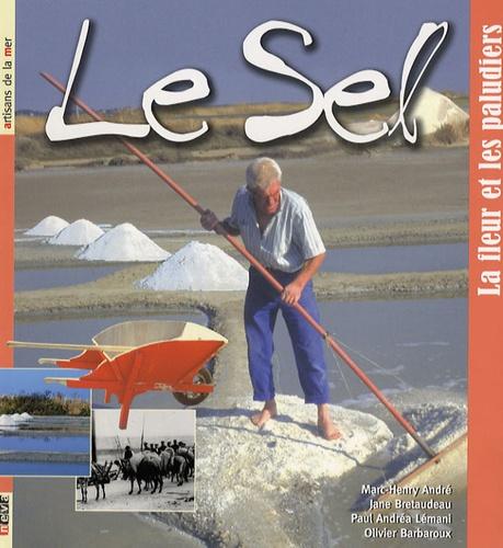 Marc-Henry André - Le sel - La fleur et les paludiers.