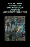 Marcel Labine - Promenades dans nos dépôts lapidaires.