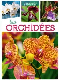 Marcel Lecoufle - Les orchidées.