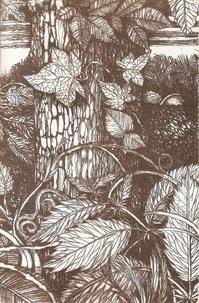 Marcelle Delpastre - Lo libre de l'erba e daus aubres.