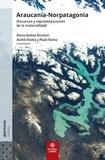 María Andrea Nicoletti et Paula Núñez - Araucanía-Norpatagonia - Discursos y representaciones de la materialidad.