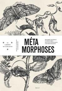 Maria Sibylla Merian - Métamorphoses - Histoire naturelle et didactique dans les collections strasbourgeoises.