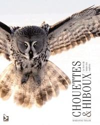 Rhonealpesinfo.fr Chouettes et hiboux - Le livre de toutes les espèces Image