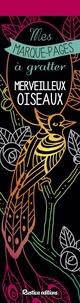 Marica Zottino - Merveilleux oiseaux - Avec un grattoir.