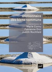 Marie Cornu et Fabienne Orsi - Dictionnaire des biens communs.