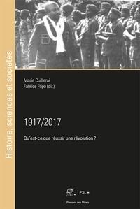 Marie Cuillerai et Fabrice Flipo - 1917/2017 - Qu'est-ce que réussir une révolution ?.