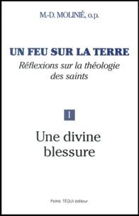 Marie-Dominique Molinié - Un feu sur la terre - Tome 1, Une divine blessure.