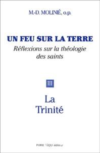 Marie-Dominique Molinié - Un feu sur la terre - Tome 3, La Trinité.