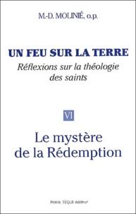 Marie-Dominique Molinié - Un feu sur la terre - Tome 6, Le mystère de la Rédemption.