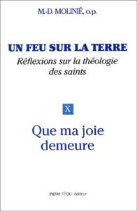 Marie-Dominique Molinié - Un feu sur la terre - Tome 10, Que ma joie demeure.