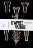 Marie-Dominique Wandhammer - D'après nature - Formes de Haeckel et modèles en verre des Blaschka.