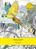 Marie M et Adrienne Bornstein - Affiche à colorier Animaux du ciel.