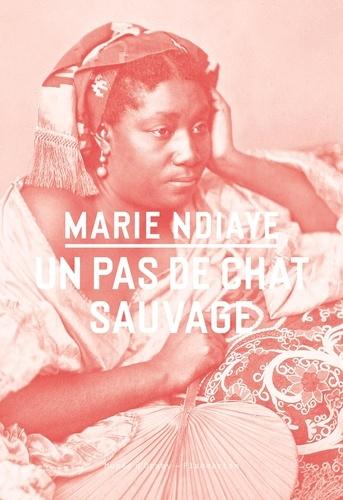 Marie NDiaye - Un pas de chat sauvage.