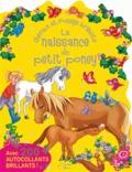 Marie-Paule Zierski - La naissance du petit poney - Avec 200 autocollants brillants !.
