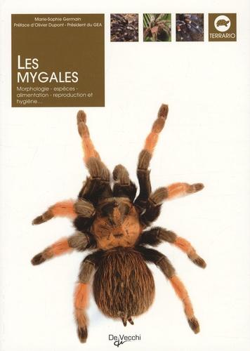 Marie-Sophie Germain - Les mygales.