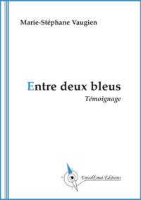 Marie-Stéphane Vaugien - Entre deux bleus.