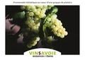 Marielle Sindt et Laurent Madelon - Vins Savoie - Essence et sens.