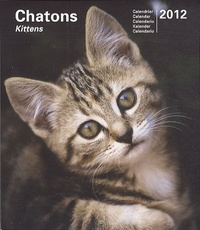 Marine Gille - Chatons - Calendrier 2012.