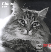 Marine Gille - Chats Calendrier 2012.