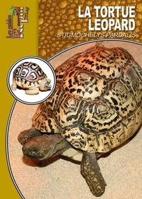 Era-circus.be La tortue léopard Image