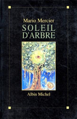 Soleil d'arbre