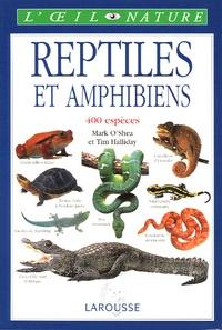 Birrascarampola.it Reptiles et amphibiens Image