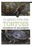 Marta Avanzi - Les tortues terrestres.