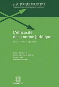 Marthe Fatin-Rouge Stéfanini et Laurence Gay - L'efficacité de la norme juridique - Nouveau vecteur de légitimité ?.