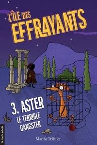 Marthe Pelletier et Sara Fortier - Aster, le terrible gangster - L'île des Effrayants, tome 3.