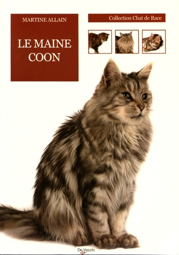 Martine Allain - Le chat Maine Coon.