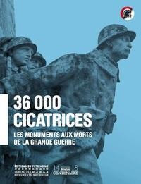 Martine Aubry et François Hébel - 36 000 cicatrices, les monuments aux morts de la grande guerre.
