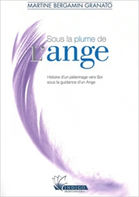 Deedr.fr Sous la plume de l'ange - Histoire d'un pèlerinage vers soi sous la guidance d'un ange Image