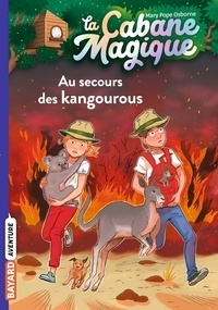 Deedr.fr La Cabane Magique Tome 19 Image
