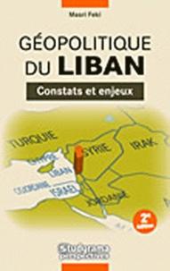 Rhonealpesinfo.fr Géopolitique du Liban - Constats et enjeux Image