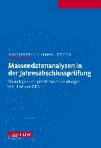 Massendatenanalysen in der Jahresabschlussprüfung - Grundlagen und praktische Anwendungen mit Hilfe von IDEA.