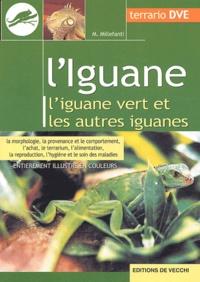 Galabria.be L'Iguane Image