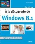 Mathieu Lavant - A la découverte de Windows 8.1 - Spécial grands débutants.