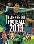 Matthieu Le Chevallier et David Opoczynski - L'année du football 2013.